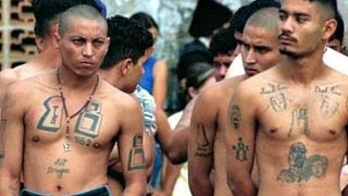 Is immigration crackdown the wrong strategy for MS-13?