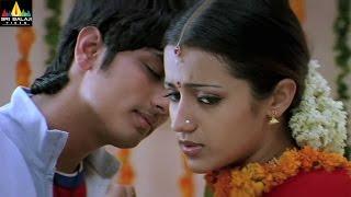 Nuvvostanante Nenoddantana Movie Scenes   Siddharth and Trisha Scene   Sri Balaji Video
