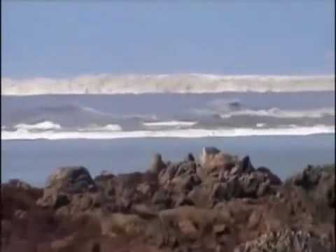MEGA TSUNAMI Caught On Camera Raw Video(new)