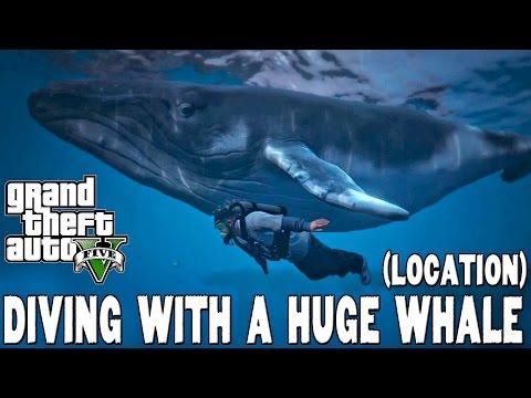 GTA V PS4 - Diving with a humpback WHALE (Mergulhando com uma baleia jubarte)