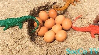 Trò Chơi Khủng Long Bạo Chúa Ăn Trộm Trứng Cá Sấu - Cá Sấu Đại Chiến Khủng Long
