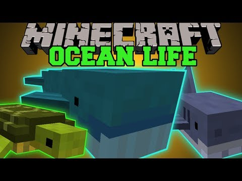 Minecraft: OCEAN LIFE (NEW OCEAN MOBS, CREATE YOUR OWN AQUARIUM!) Mod Showcase