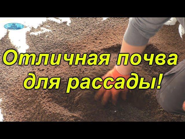 Готовим почву для рассады самостоятельно!