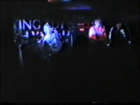 Die Toten Hosen - More & More