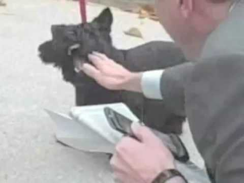 Bush's Dog Bites Reporter: WHY HE DID IT Video