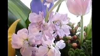 Fell Me- arreglos florales en El Salvador