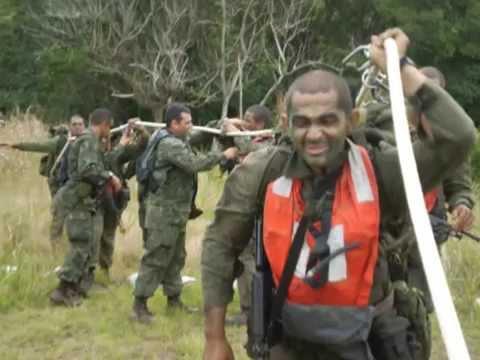 comandos anfibios 2008/1