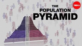 Bevolkingspiramides: een vooruitblik naar de toekomst - Kim Preshoff
