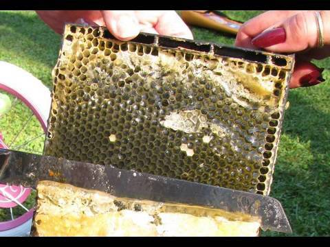 how to use bee hive extraction tube