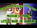 Prologue/Opening - Little Shop of Horrors - November 2015