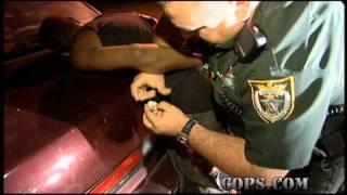 Resisting Arrest, Deputy Rick Lee, COPS TV SHOW