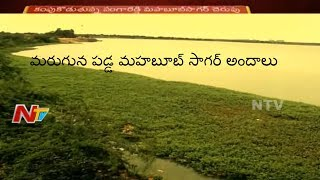 Mahabub Sagar Turns to Dump Yard | Govt Negligence on Sangareddy Historic Pond | NTV