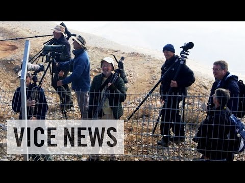 Bird-Watching in a War Zone (Extra Scene from