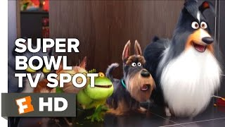 Video clip The Secret Life Of Pets Super Bowl TV Spot (2016) - Kevin Hart, Jenny Slate Animated Comedy HD
