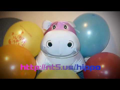 Hippo Singing Happy Birthday In Spanish! video