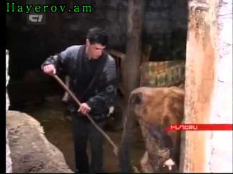 Lurer Armenia   20 07 2012