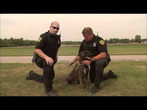 Boiler Bytes: Police add K-9 unit
