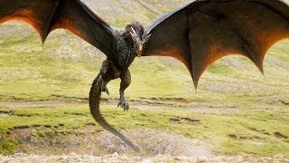 Game Of Thrones - Drogon And The Sheep Herder (Season 4)