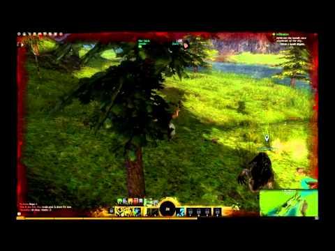 Guild Wars 2 - Nvidia Geforce GTS 250 512 MB