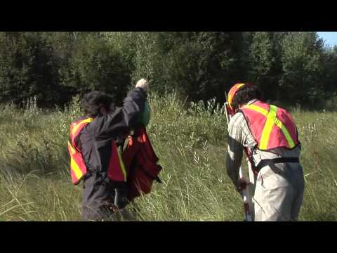 Assessment Methods for Oil Sands Reclamation Marshes