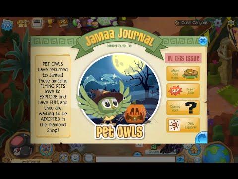 Animal Jam: Updates POLAR BEARS AND MORE DEN STORAGE PRAAAISE