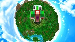 WHAT IF THE MINECRAFT WORLD WAS THIS SMALL?