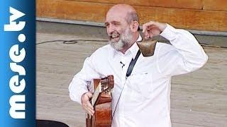 Gryllus Vilmos: Dalok - a színpadon (koncert részlet)