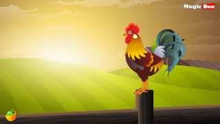 Kodi - Telugu Nursery Rhymes - Cartoon And Animated Rhymes For Kids