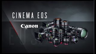Introducing the Canon Cinema Family of Lenses