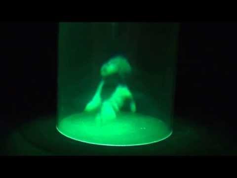 360º Cylindrical hologram
