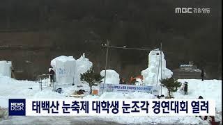 대학생 눈조각 경연대회 '열기' 고조