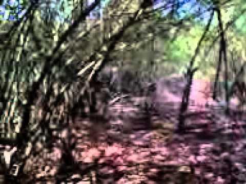 Abg Maen Di Semak Bugil. video