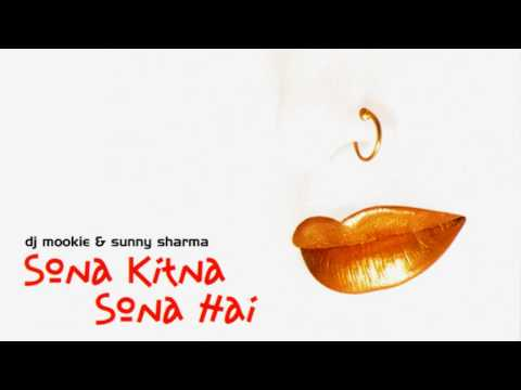 Dj Mookie & Sunny - Do Dil Mil Rahe [sona Kitna Sona Hai] video