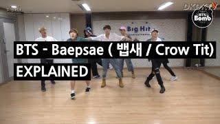 BTS - BAEPSAE (뱁새 / Crow Tit) Explained by a Korean