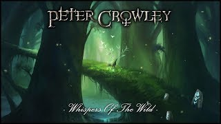 (Fantasy Celtic Music) - Whispers Of The Wild -