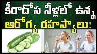 కీరాదోస నీళ్లలో ఉన్న ఆరోగ్య రహస్యాలు   Health Benefits of Cucumber   Arogya Mantra