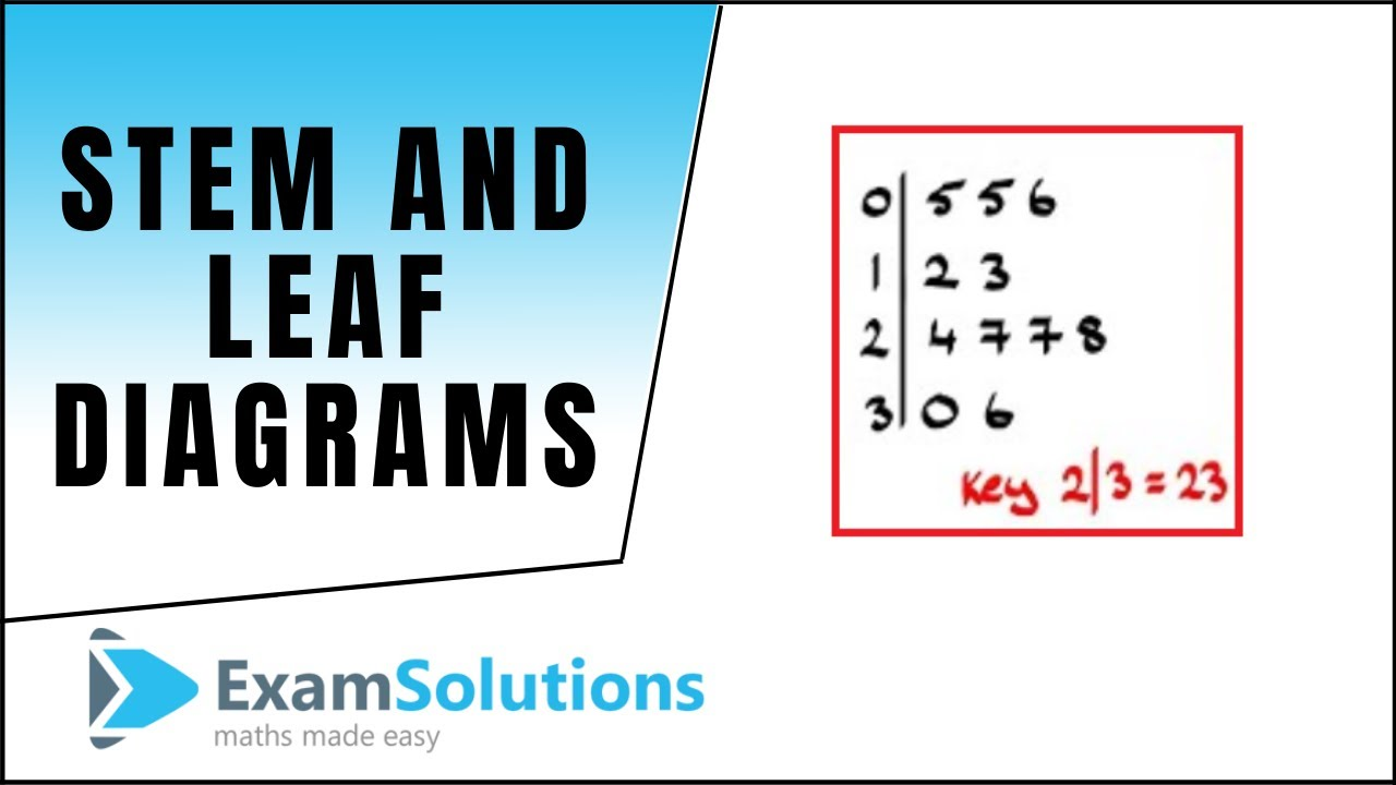Stem And Leaf Diagrams Examsolutions Youtube