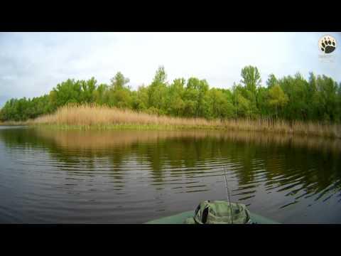 рыбалка на гнилушке