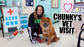 We Took Chunky To The Doctor !! Chow Chow Puppy Vet Visit !