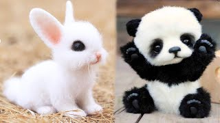Play this video AWW Animals SOO Cute! Cute baby animals Videos Compilation cute moment of the animals 7