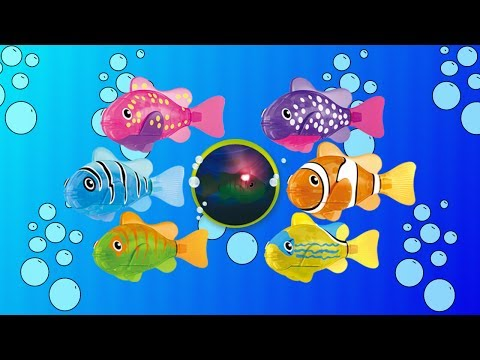 Robo Fish: LED Fish. Lifelike Robotic Smart Fish Toy Review. Zuru