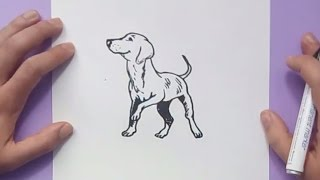Como dibujar un perro paso a paso 33 | How to draw a dog 33