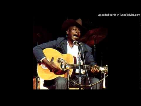 Your Troubles Gonna Be Like Mine- Robert Pete Williams