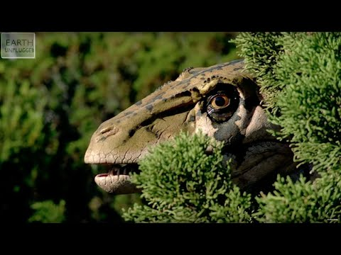 Deadliest Prehistoric Predators - Earth Unplugged