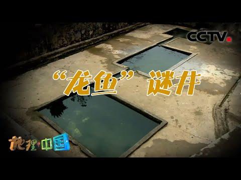 中國-地理·中國-20210307 神奇的古井·龍魚謎井