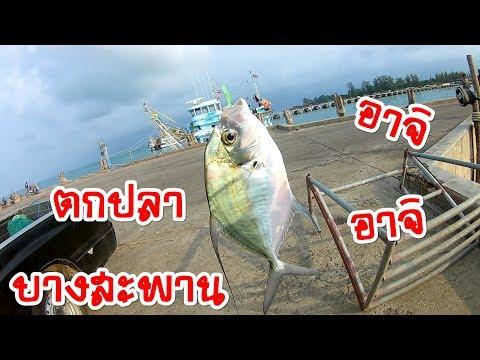 ตกปลาบางสะพาน EP.20 - ทริปตกปลาแบบอาจิ ( Aij fishing )