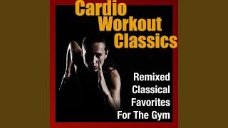 On The Beautiful Blue Danube Workout Remix Strauss