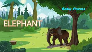 Animal Voices for Children / Animal Sounds / Best Animal Sounds