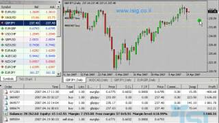 how to read commitment of traders forex