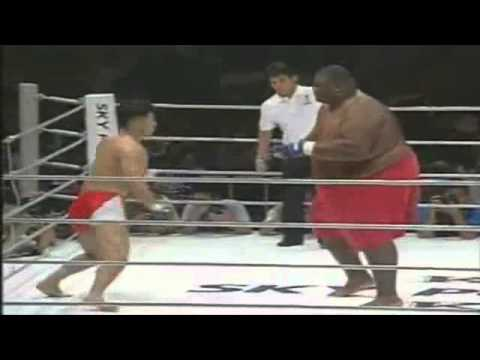 600lbs Sumo Vs 169lbs MMA Fighter Image 1